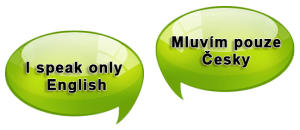Czech speaking landlord and English speaking tenant