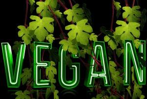 vegan diet, being vegan in Prague, vegan restaurants Prague