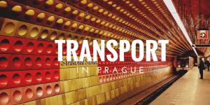 PUBLIC TRANSPORT (2)