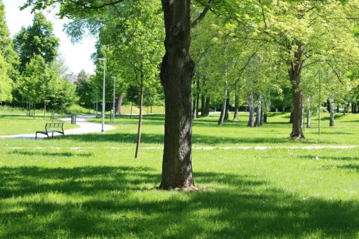 10 Gardens & Parks in Prague