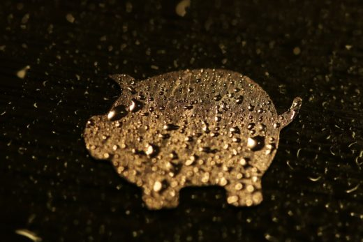 Golden Pig - a sign of the good and luck